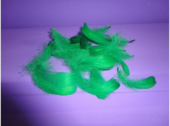 Перья зеленые 6-7 см (20шт)