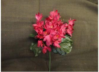 """Букет цветов """"Звездочки"""" темно-красный h22см (1шт)"""