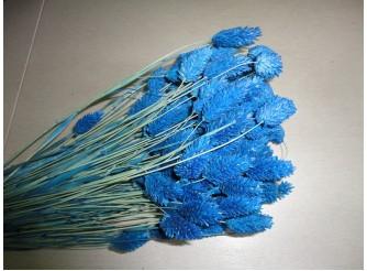 Фаларис синий (25гр)