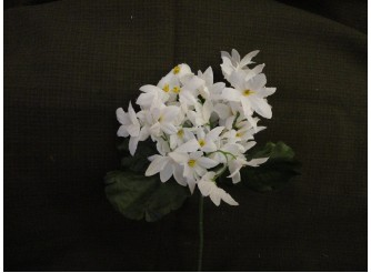 """Букет цветов """"Звездочки"""" белый h22см (1шт)"""