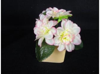 Букет азалии бело-розовый h25см, 6 голов (1шт)