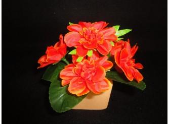 Букет азалии оранжевый h25см, 6 голов (1шт)