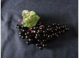 Виноград: 18см/ круглый черный (1шт)