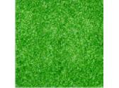 св.зеленый блеск
