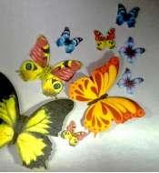 Цветочки, бабочки