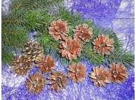 Шишки сосновые натуральные (12шт)
